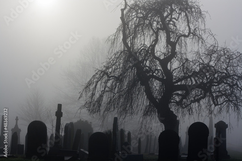Spooky old cemetery on a foggy day - 48369232