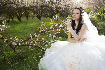Beautiful bride in blossom garden