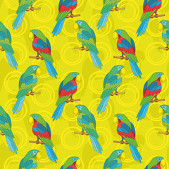 Seamless background, parrots