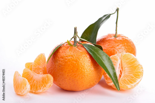 isolated clementine and leaf on white