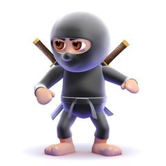 Ninja ready