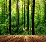 Fresh green forest with sunbeams and wooden floor - 48380205