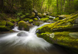 Fototapety Great Smoky Mountains National Park Gatlinburg TN Waterfalls