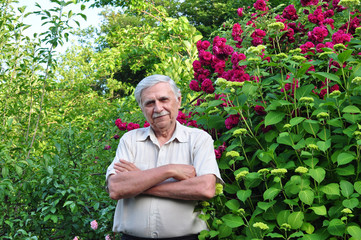 Old male gardener in the spring garden stands with folded arms