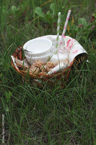 Picnic basket with cottage cheese cakes and milk bottle on grass