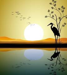 heron silhouette on lake