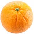 Orange a white background.