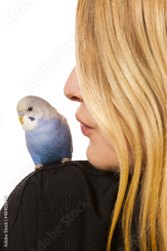 Friendly Parakeet