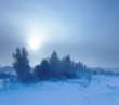 Winter landscape. Cold winter evening