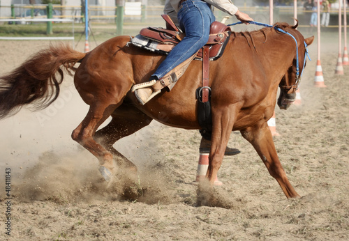 Horse and rider detail during a Pole Bending training