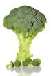 Brócoli fresco.