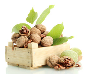 walnuts with green leaves in woooden crate, isolated on white