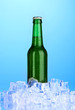 Beer bottle in ice on blue background