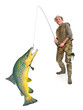 The Fisherman with big Trout (Brown Trout - Salmo Trutta).
