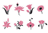 Collection of pink flowers for your design.Vector.