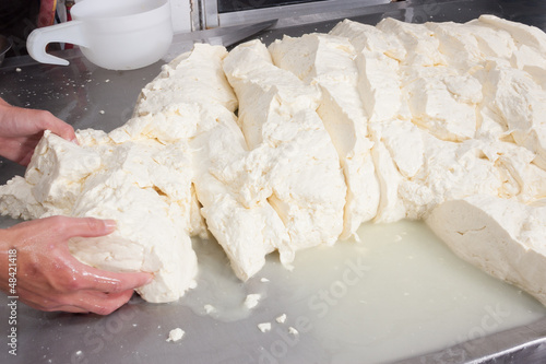 Worker processing fresh cheese