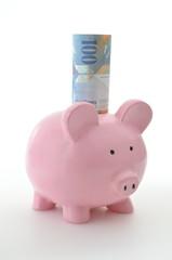 Sparschwein mit 100 Franken