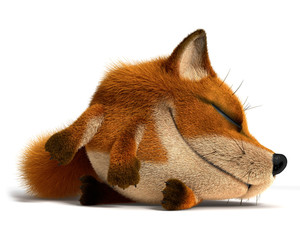 Sleep fox