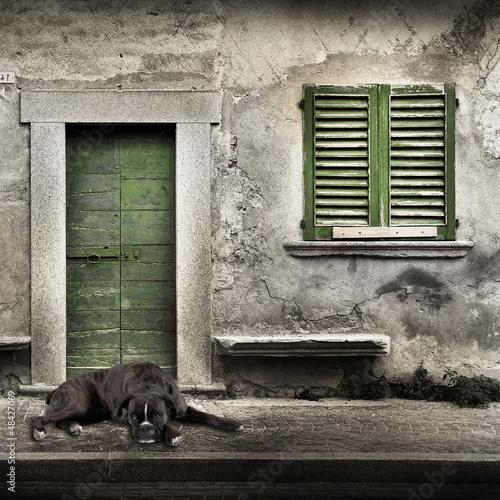 boxer solo sulla porta