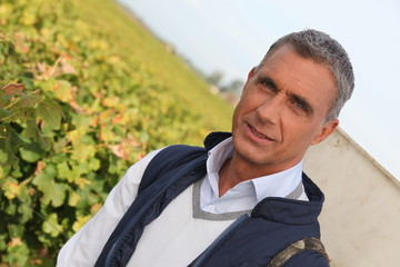 Farmer in vineyard
