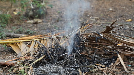 Burning grass and palm leaves