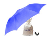 Bag with salary poster