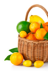 fresh citrus fruit in the basket with green leaf isolated on
