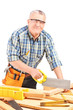 Male carpenter working in a workshop