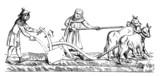 Medieval Plowman - Laboureur - 14th century