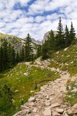 Hiking Trail Through Mountains