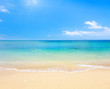 beach and tropical sea - 48441015
