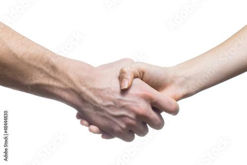 Der Pakt