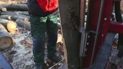 Buchenholzspaltung