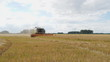 Fields being harvested for animal feed