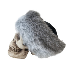 Mongolian Fur Cap on a Skull
