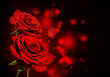 canvas print picture - Red roses Valentine background