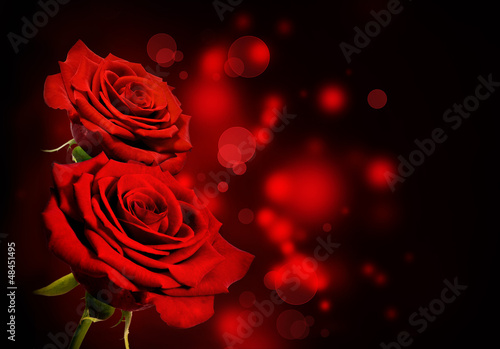 canvas print picture Red roses Valentine background