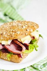 Fresh Homemade Turkey Sandwich