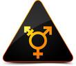 Transgender Hazard