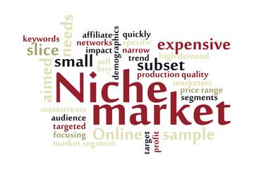 Niche market word cloud
