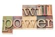 willpower in wood type