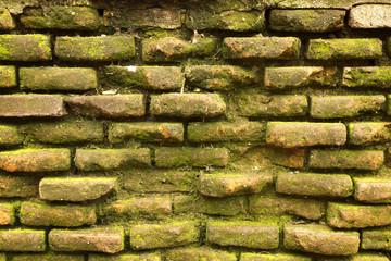 Antique brick texture