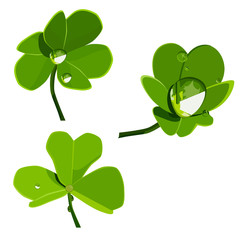shamrock with drops