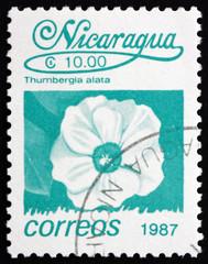 Postage stamp Nicaragua 1987 Black-eyed Susan Vine, Flower