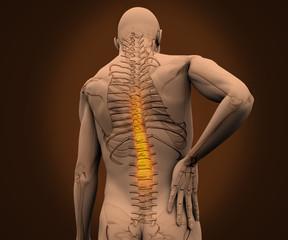 Digital skeleton having highlighted pain on his back