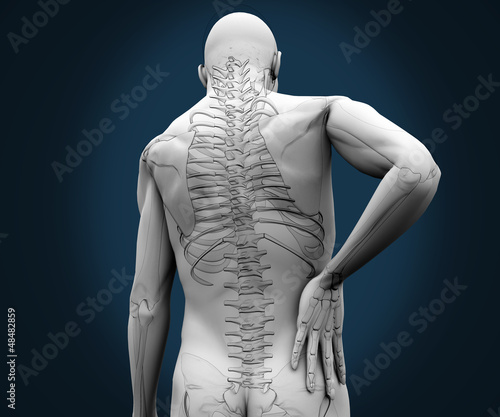 Skeleton having pain on his back