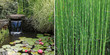 diptyque vert zen - 48483821