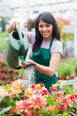 Garden center worker watering plants