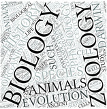 Zoology Disciplines Concept poster