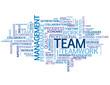 """TEAM"" Tag Cloud (teamwork management goals targets performance)"